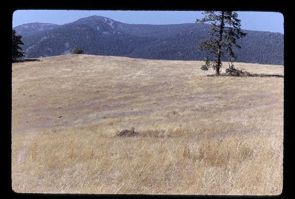 gus-hormay-september-22-1971-idaho.jpg
