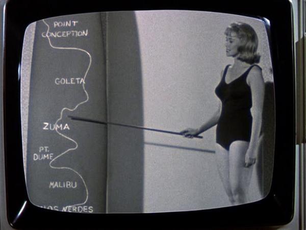 1965 That Darn Cat - Robert Stevenson