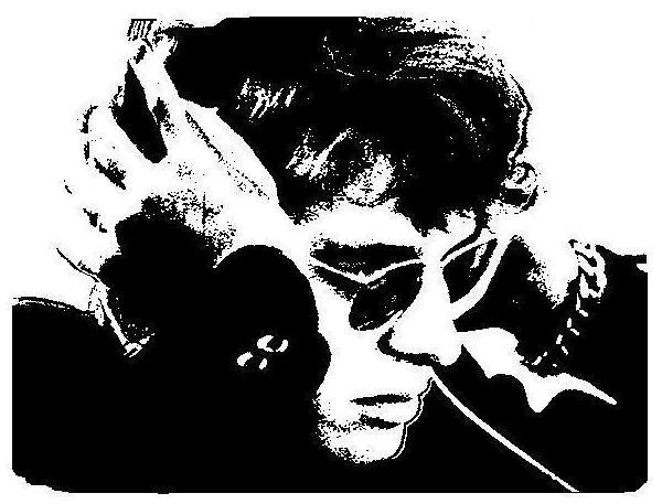 Lemke hört Elvis - Siebdruck 2012